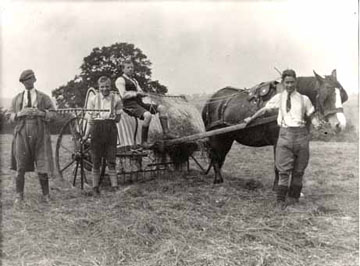 The Standon farm relied upon its powerful horses to plough and harvest the fields. They also kept a variety of other animals including pigs, cows and chickens.